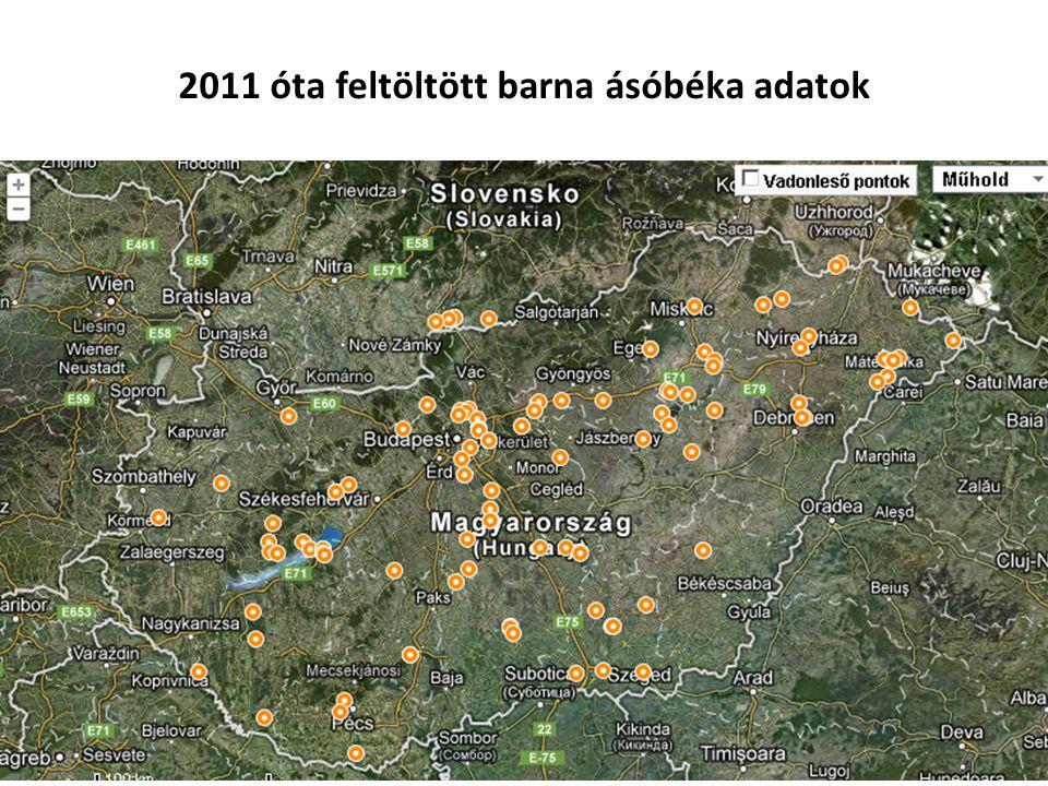 2011 óta feltöltött barna ásóbéka adatok