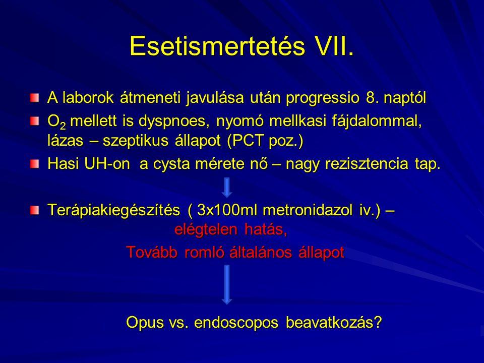 Esetismertetés VII. A laborok átmeneti javulása után progressio 8. naptól.