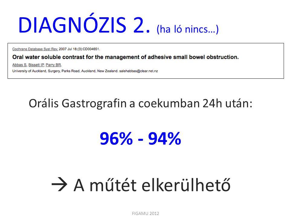 DIAGNÓZIS 2. (ha ló nincs…)
