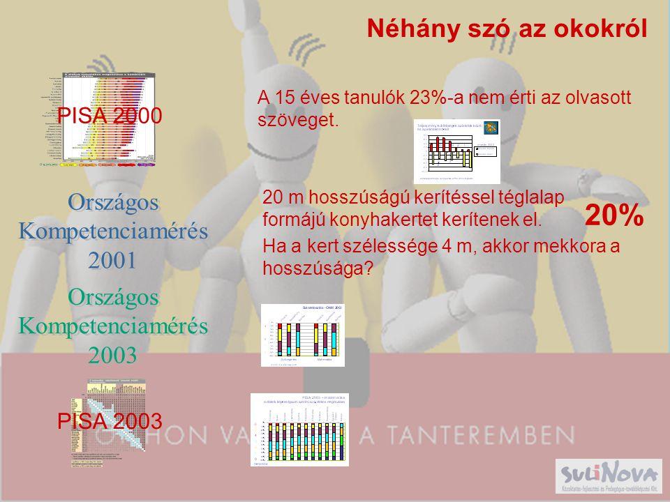 20% Néhány szó az okokról PISA 2000 Országos Kompetenciamérés 2001