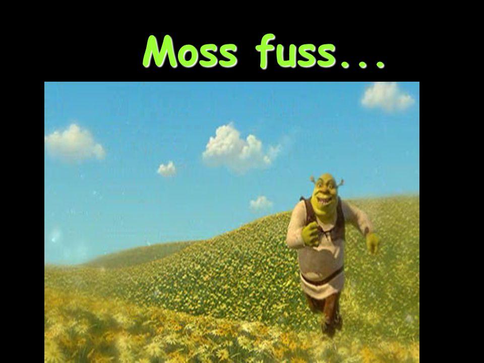 Moss fuss...