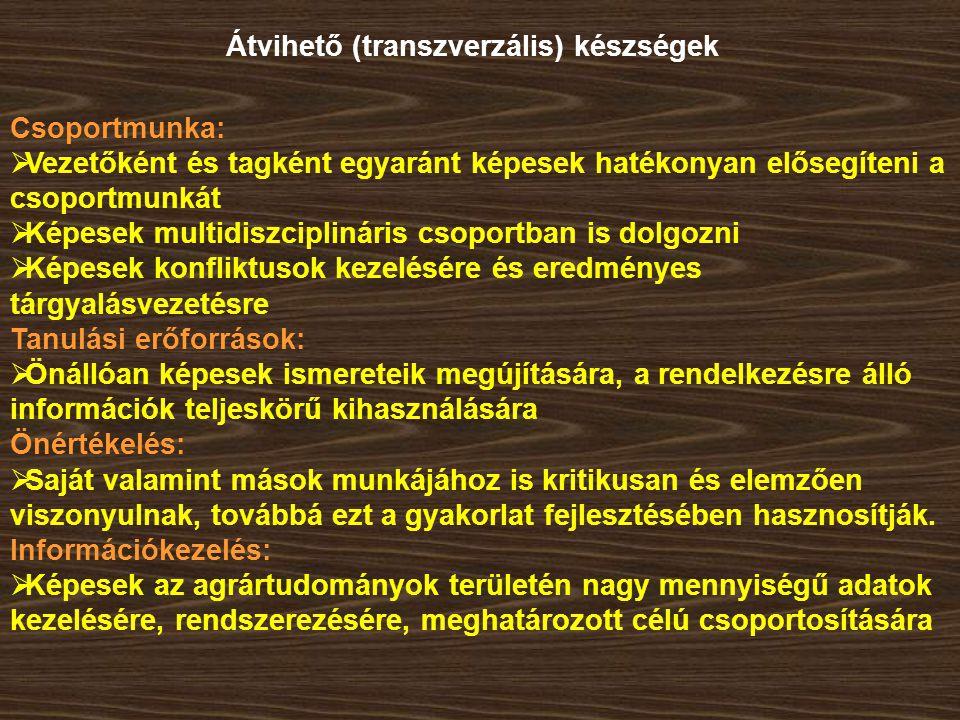 Átvihető (transzverzális) készségek