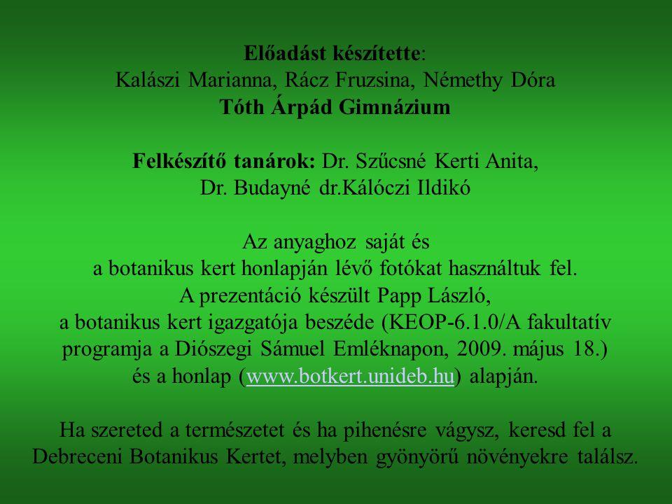 Kalászi Marianna, Rácz Fruzsina, Némethy Dóra Tóth Árpád Gimnázium