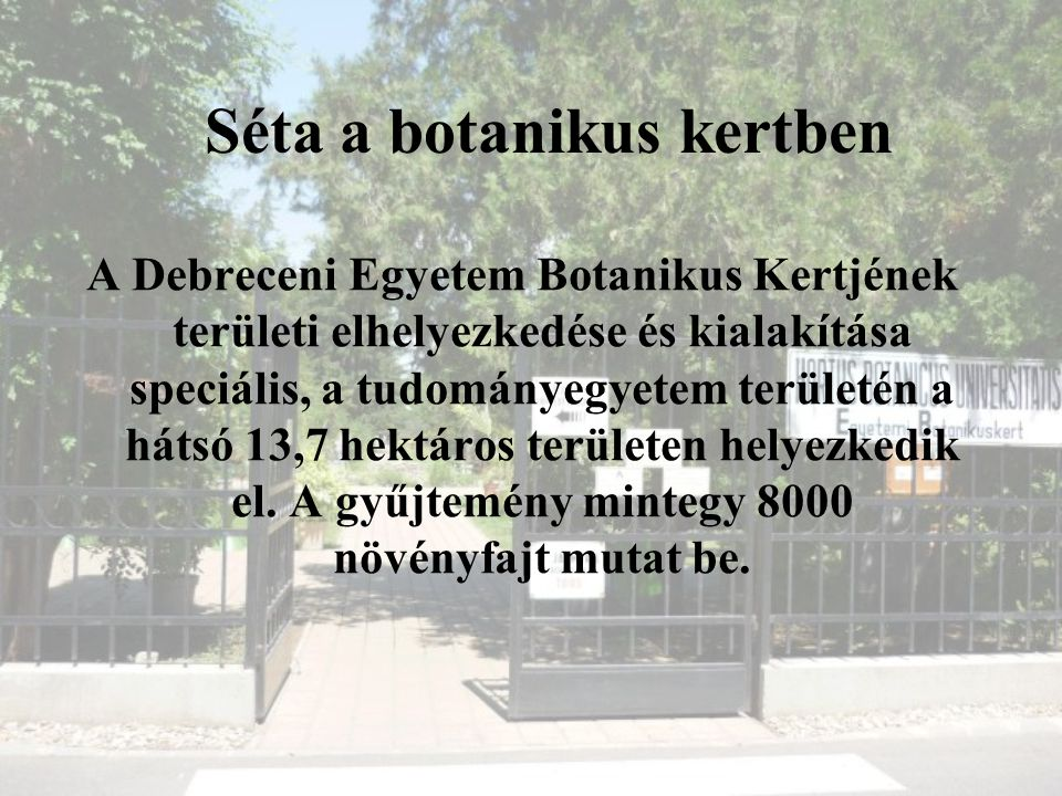 Séta a botanikus kertben