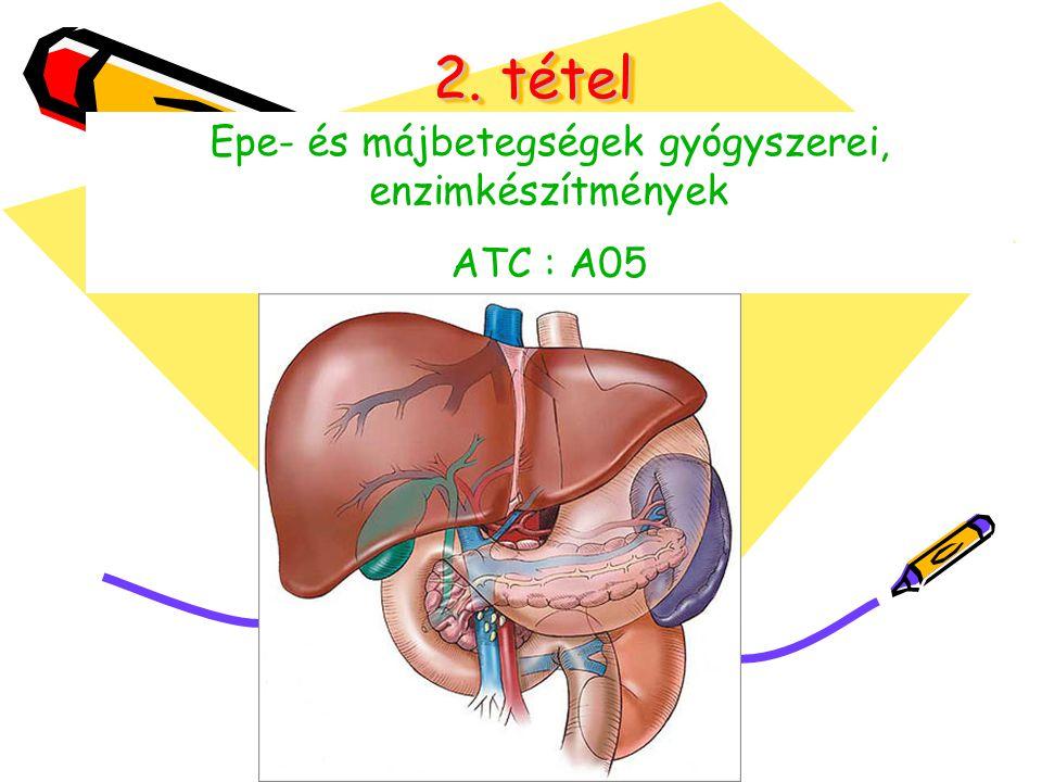 Epe- és májbetegségek gyógyszerei, enzimkészítmények
