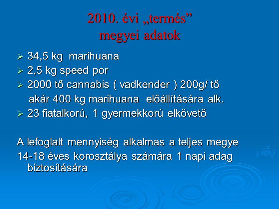"""2010. évi """"termés megyei adatok"""