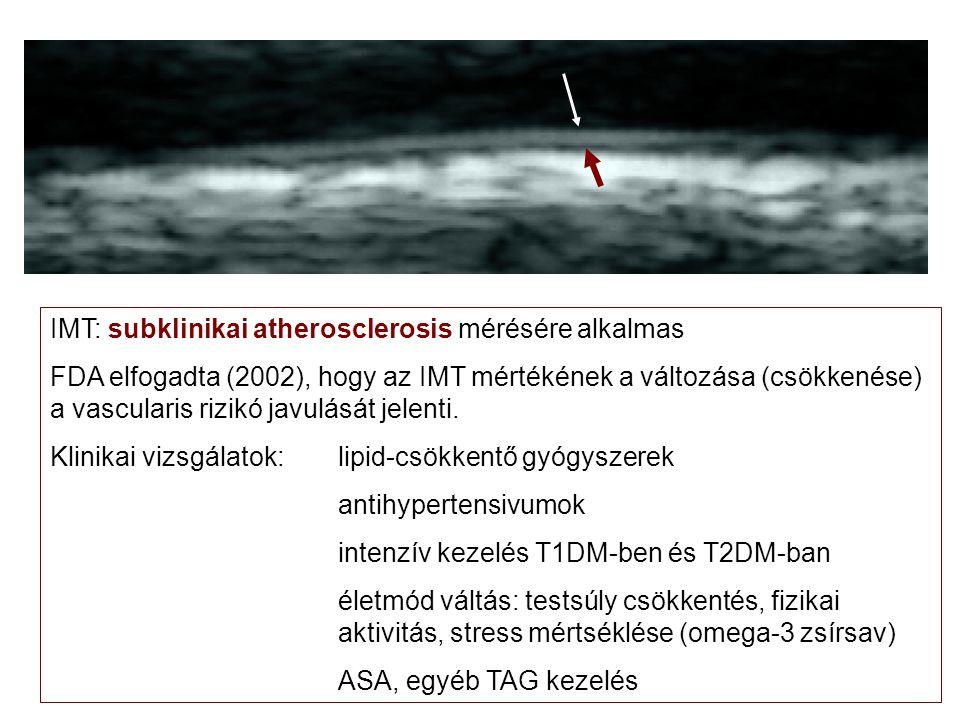 IMT: subklinikai atherosclerosis mérésére alkalmas