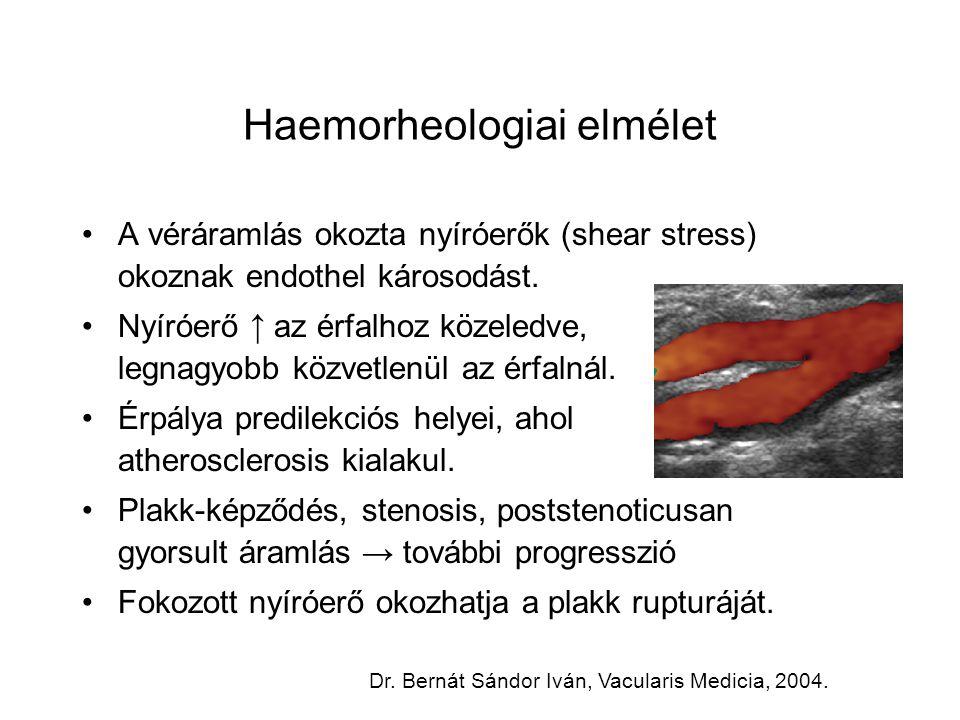 Haemorheologiai elmélet