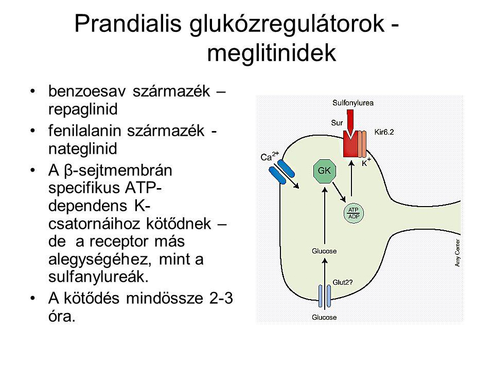 Prandialis glukózregulátorok - meglitinidek