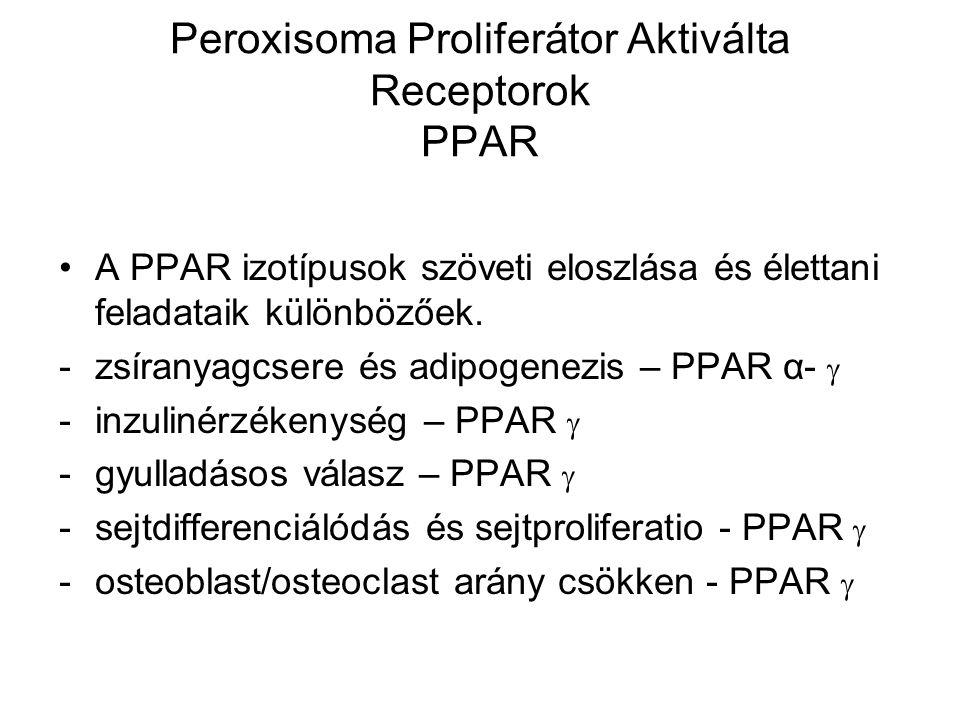 Peroxisoma Proliferátor Aktiválta Receptorok PPAR