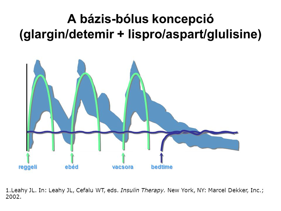 A bázis-bólus koncepció (glargin/detemir + lispro/aspart/glulisine)