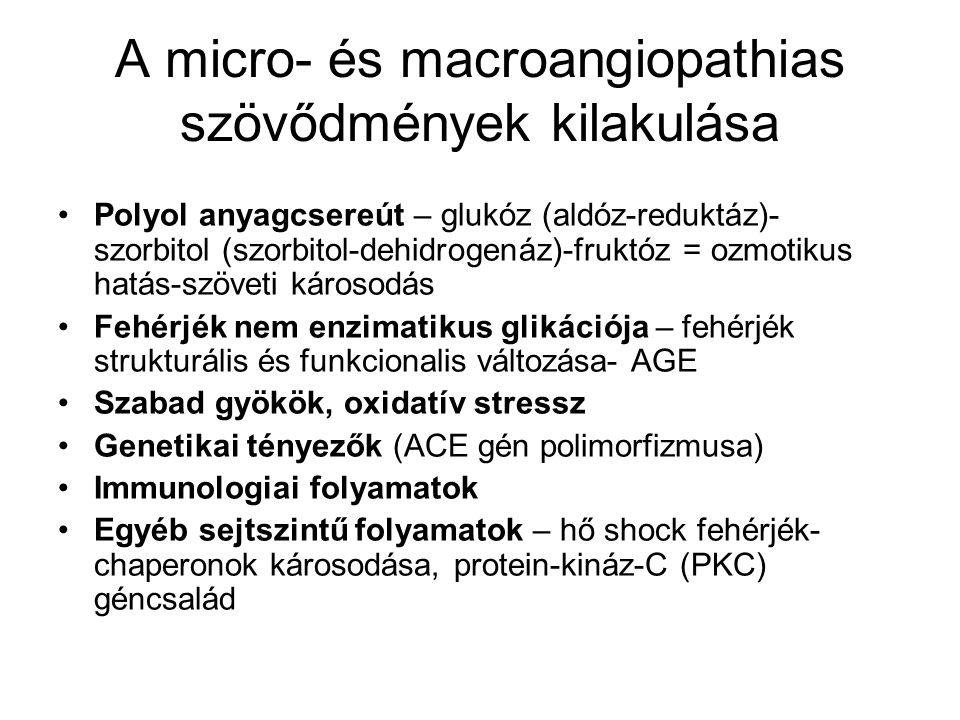 A micro- és macroangiopathias szövődmények kilakulása