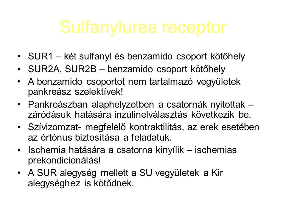 Sulfanylurea receptor