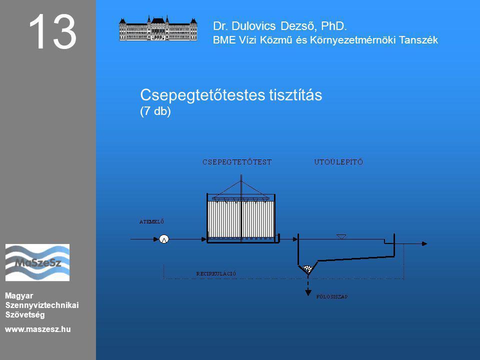 13 Csepegtetőtestes tisztítás Dr. Dulovics Dezső, PhD. (7 db)