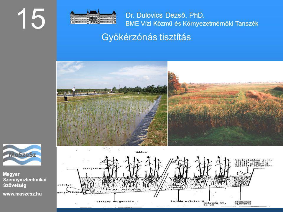 15 Gyökérzónás tisztítás Dr. Dulovics Dezső, PhD.