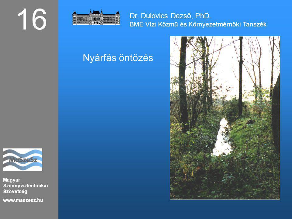 16 Nyárfás öntözés Dr. Dulovics Dezső, PhD.