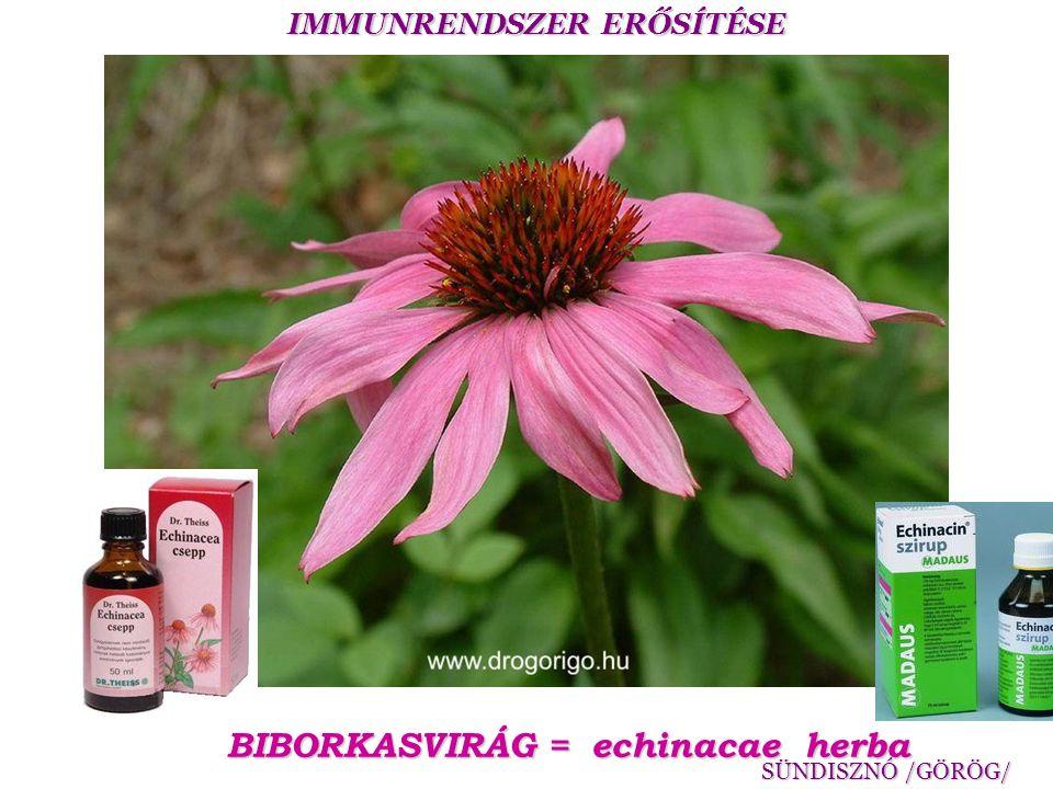 BIBORKASVIRÁG = echinacae herba
