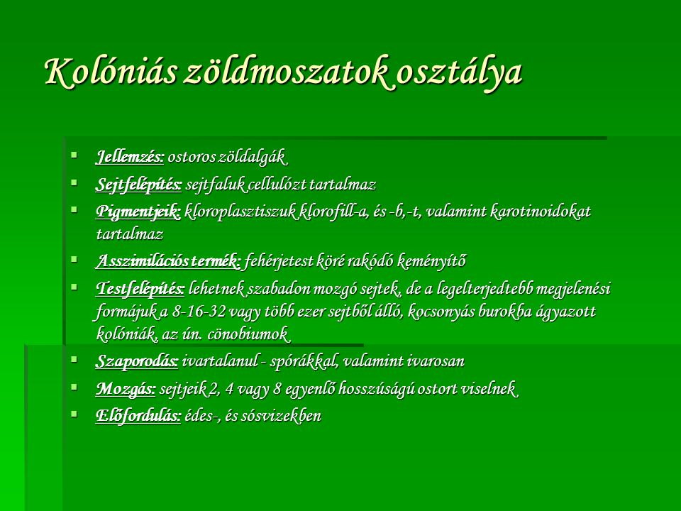 Kolóniás zöldmoszatok osztálya