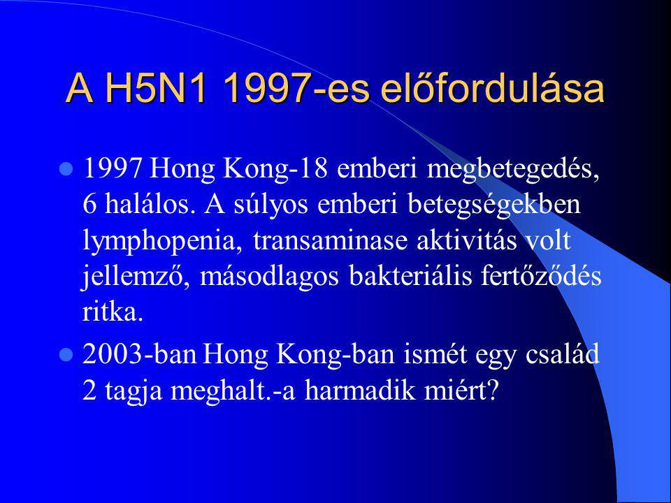 A H5N1 1997-es előfordulása