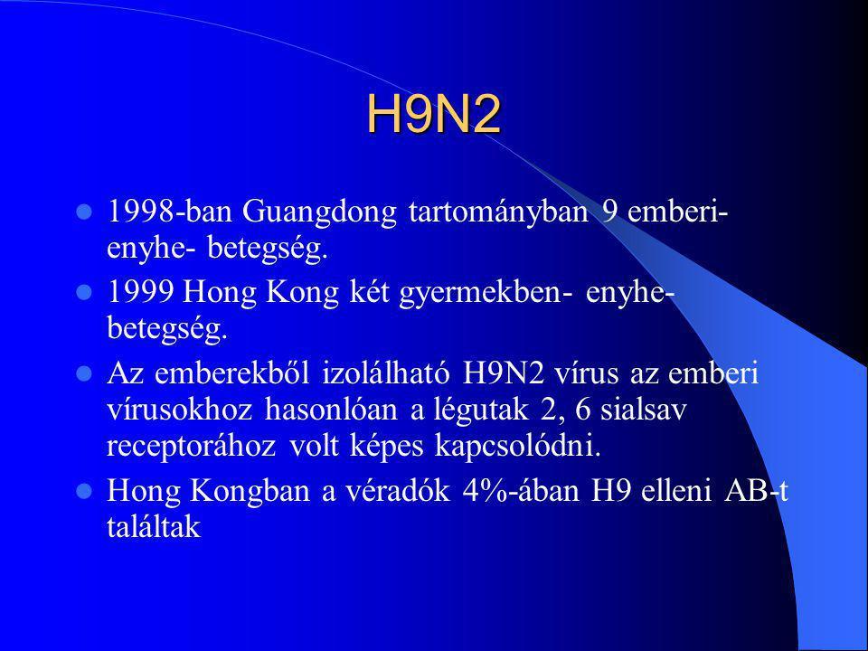 H9N2 1998-ban Guangdong tartományban 9 emberi- enyhe- betegség.