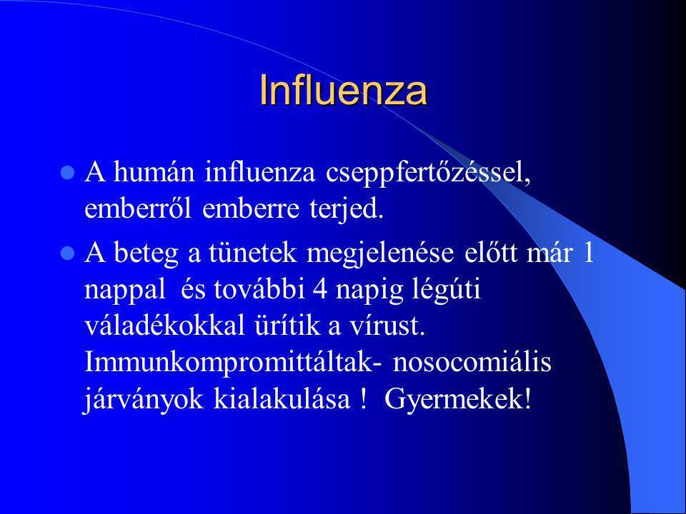 Influenza A humán influenza cseppfertőzéssel, emberről emberre terjed.