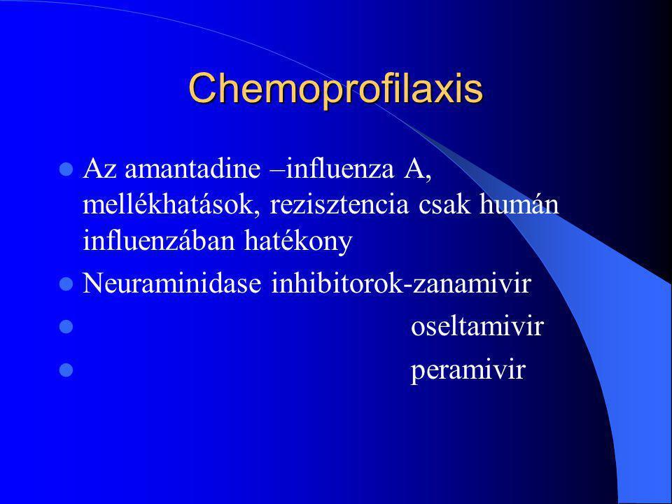 Chemoprofilaxis Az amantadine –influenza A, mellékhatások, rezisztencia csak humán influenzában hatékony.