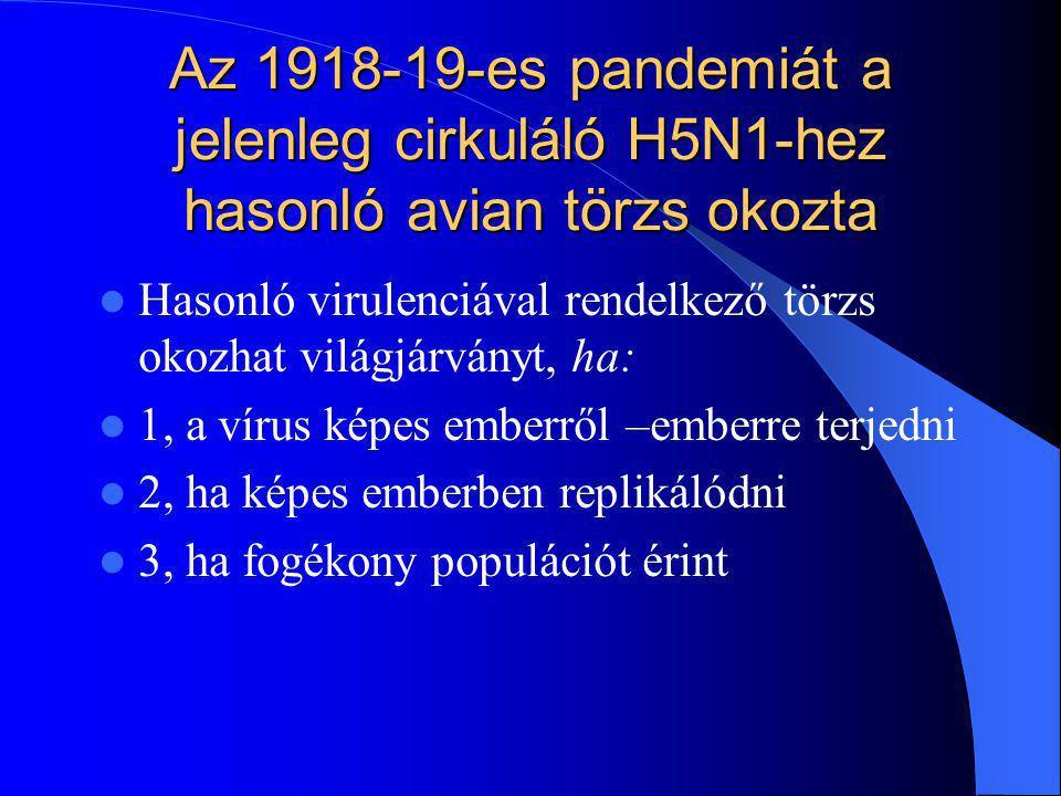 Az 1918-19-es pandemiát a jelenleg cirkuláló H5N1-hez hasonló avian törzs okozta