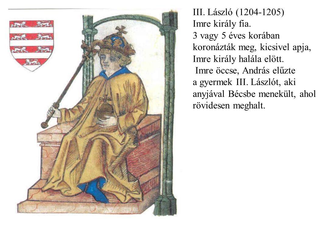 III. László (1204-1205) Imre király fia. 3 vagy 5 éves korában. koronázták meg, kicsivel apja, Imre király halála elött.