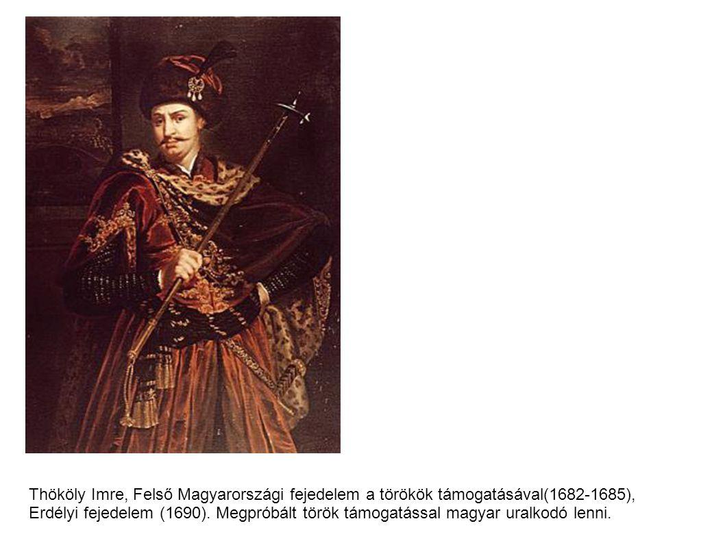 Thököly Imre, Felső Magyarországi fejedelem a törökök támogatásával(1682-1685),