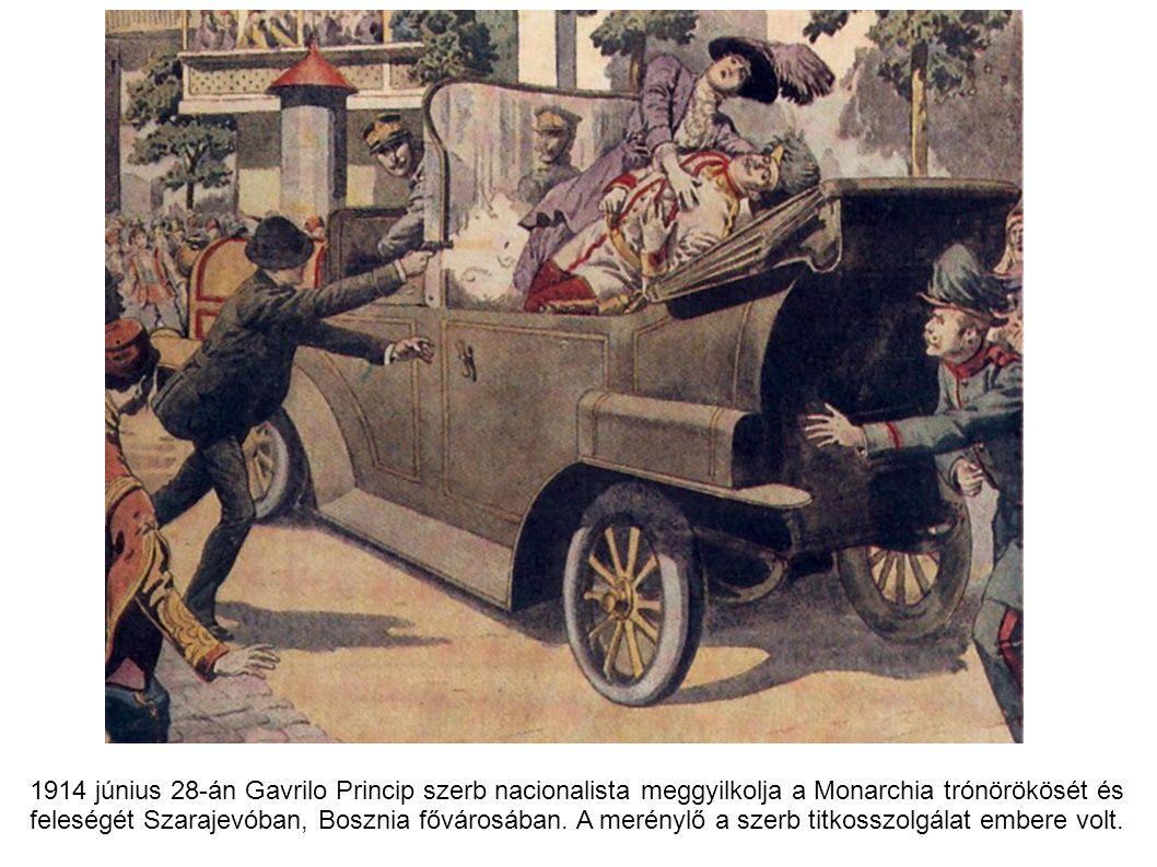 1914 június 28-án Gavrilo Princip szerb nacionalista meggyilkolja a Monarchia trónörökösét és