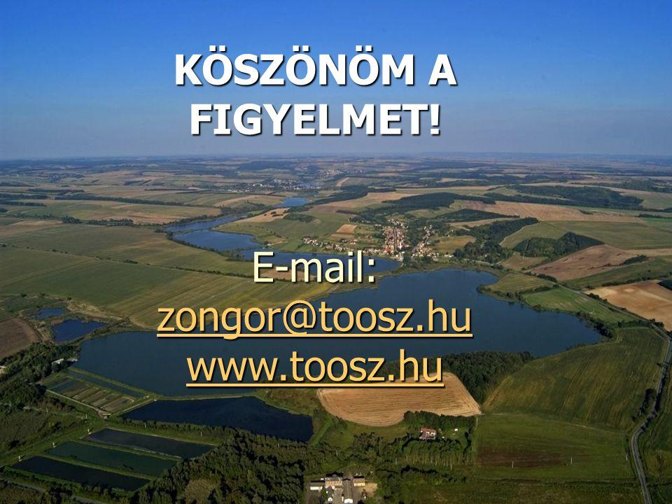 E-mail: zongor@toosz.hu