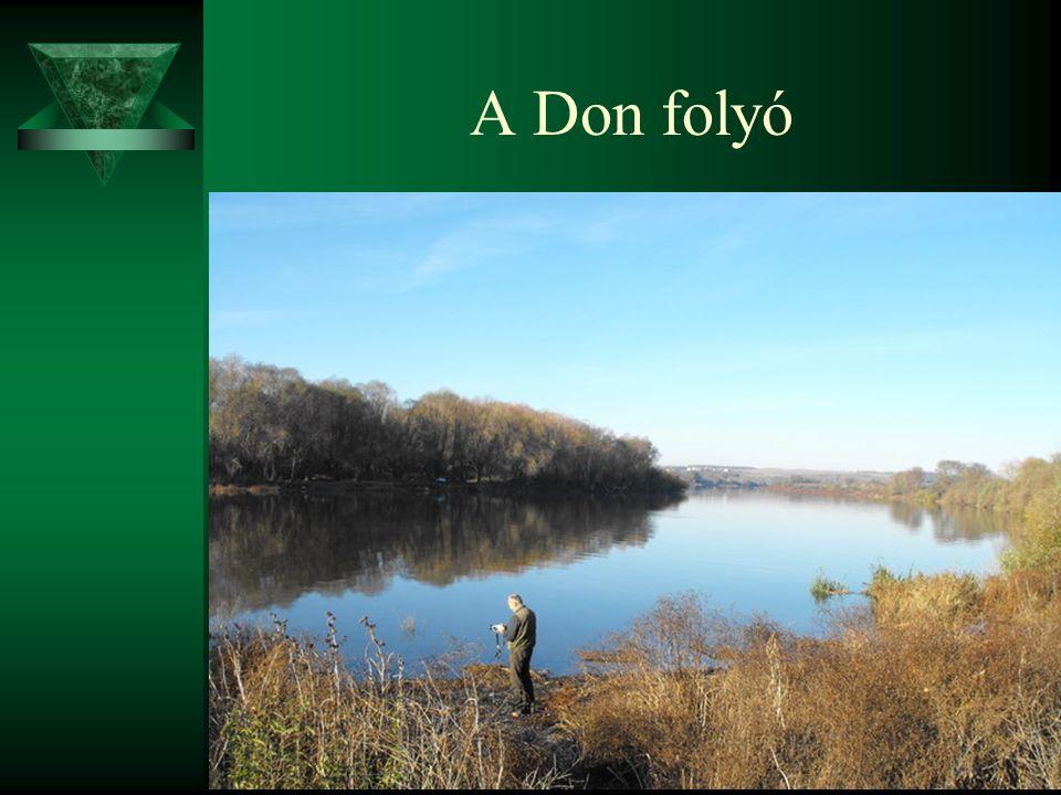 A Don folyó