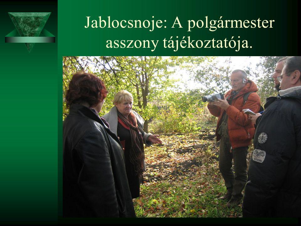 Jablocsnoje: A polgármester asszony tájékoztatója.