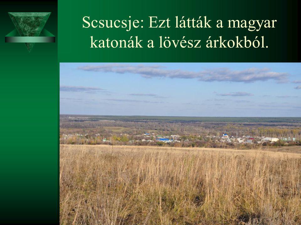 Scsucsje: Ezt látták a magyar katonák a lövész árkokból.