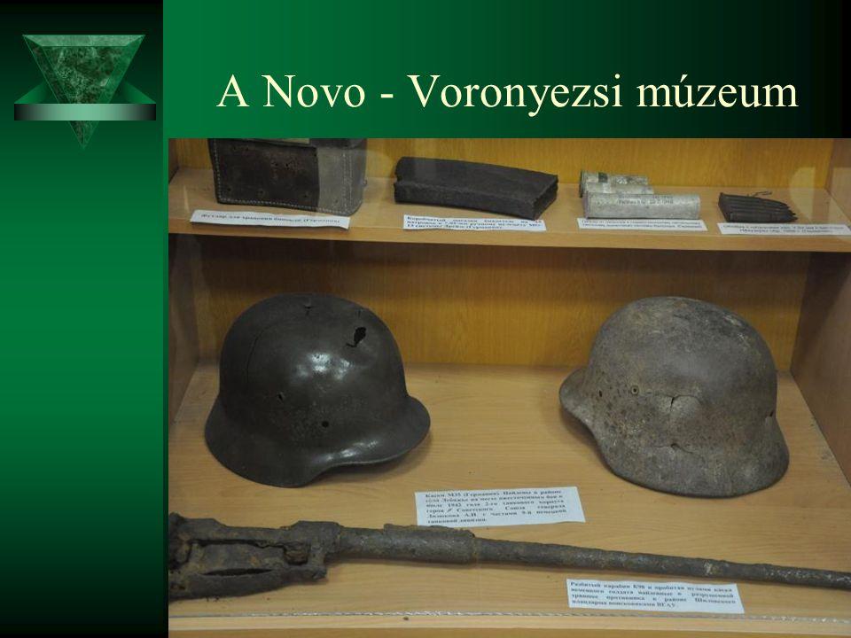 A Novo - Voronyezsi múzeum