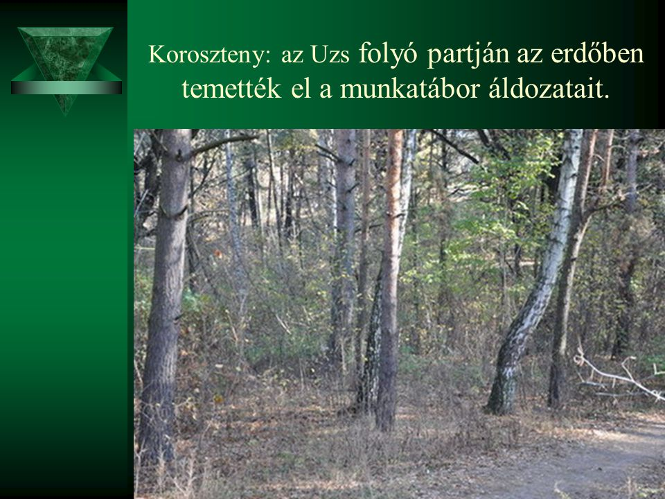 Koroszteny: az Uzs folyó partján az erdőben temették el a munkatábor áldozatait.