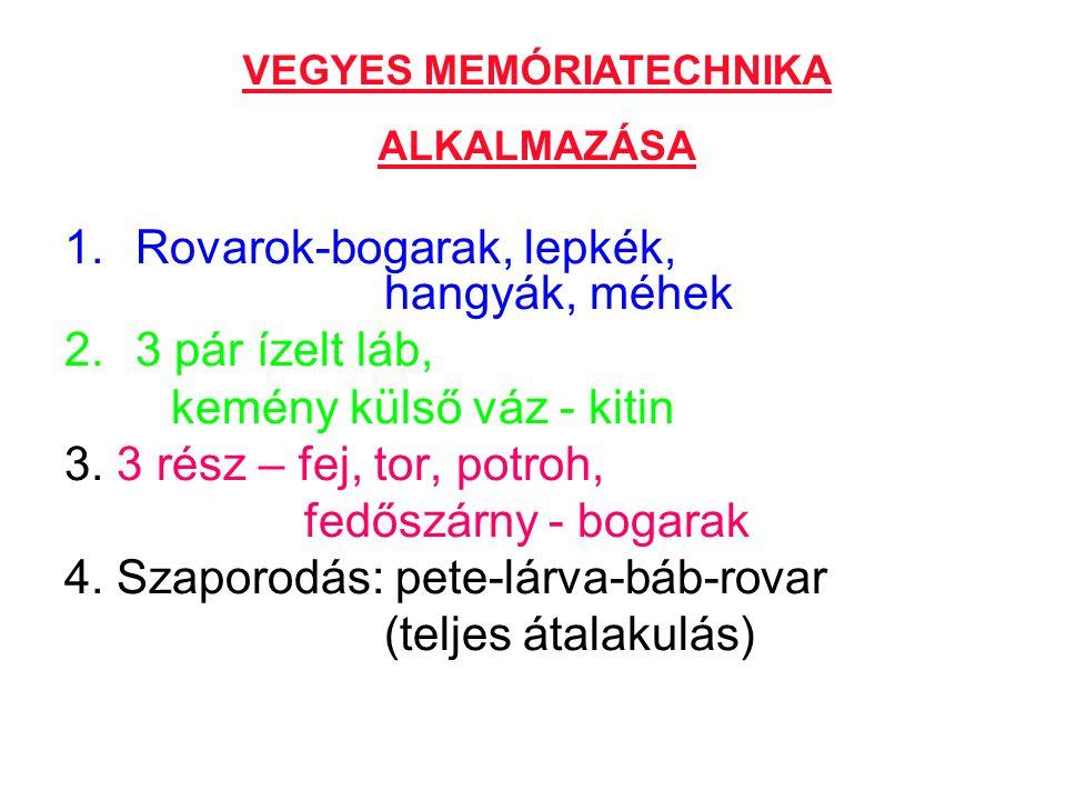 VEGYES MEMÓRIATECHNIKA