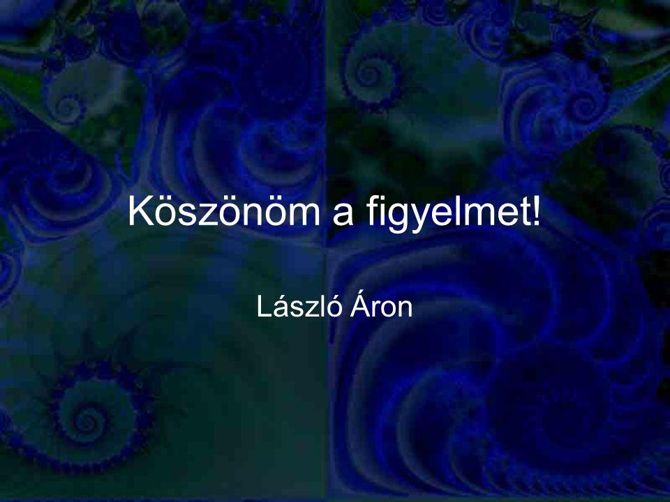 Köszönöm a figyelmet! László Áron