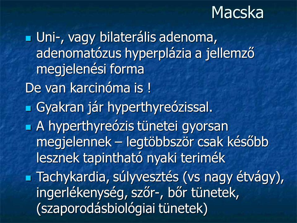 Macska Uni-, vagy bilaterális adenoma, adenomatózus hyperplázia a jellemző megjelenési forma. De van karcinóma is !