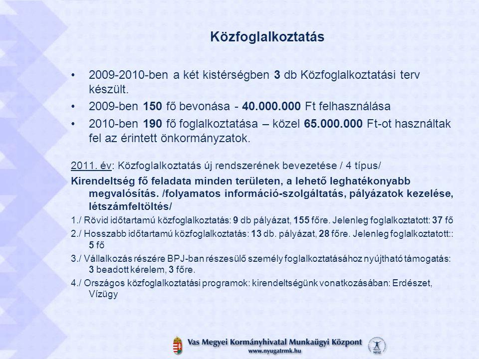 Közfoglalkoztatás 2009-2010-ben a két kistérségben 3 db Közfoglalkoztatási terv készült. 2009-ben 150 fő bevonása - 40.000.000 Ft felhasználása.
