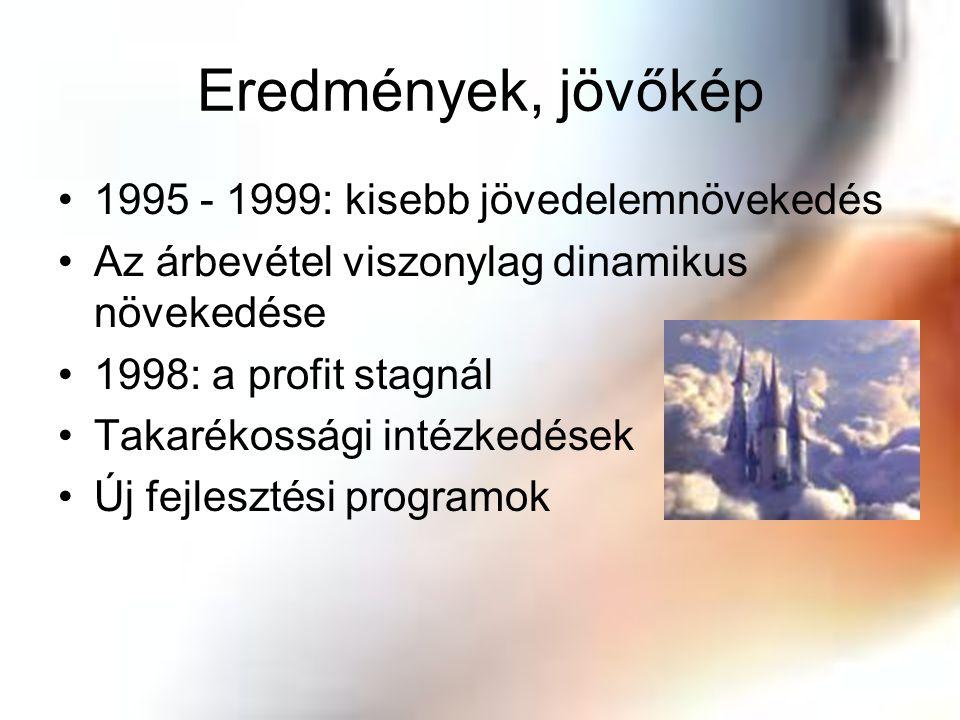 Eredmények, jövőkép 1995 - 1999: kisebb jövedelemnövekedés