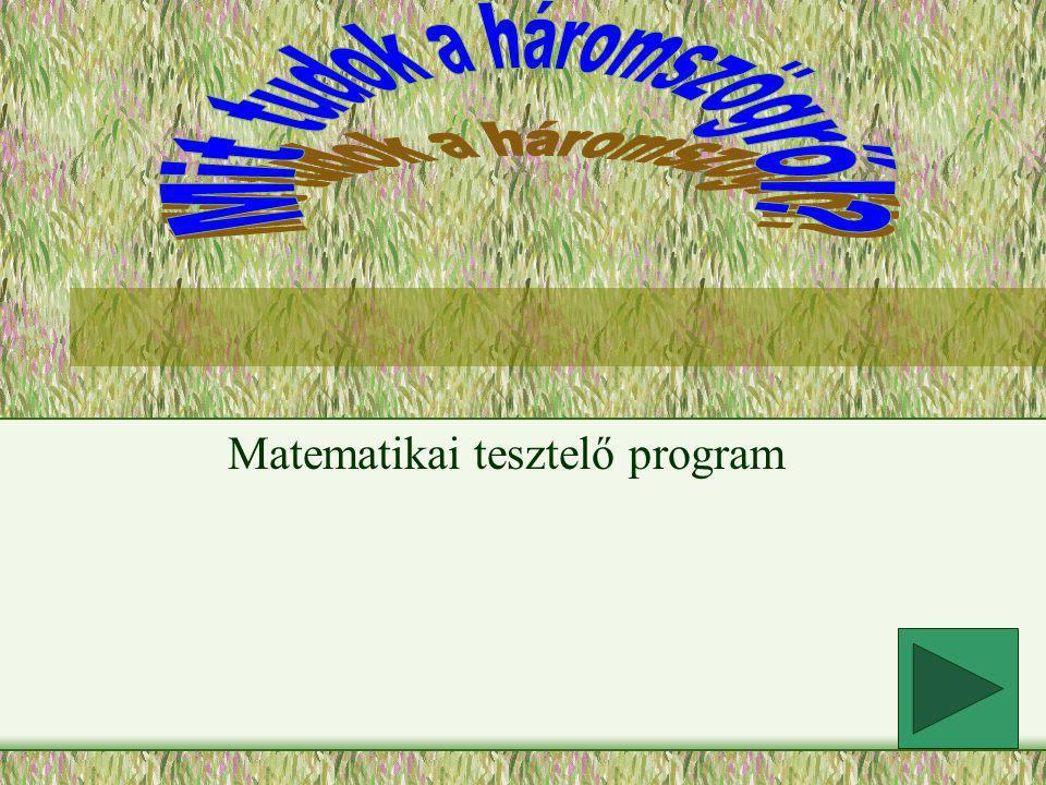 Matematikai tesztelő program