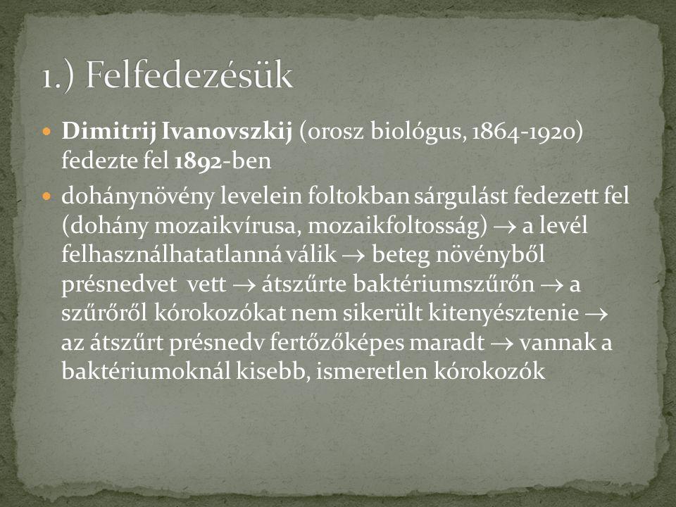 1.) Felfedezésük Dimitrij Ivanovszkij (orosz biológus, 1864-1920) fedezte fel 1892-ben.
