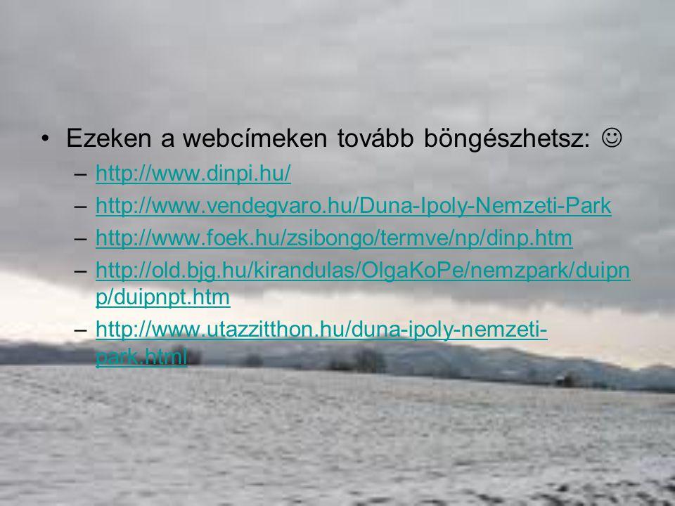 Ezeken a webcímeken tovább böngészhetsz: 