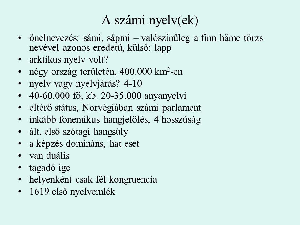 A számi nyelv(ek) önelnevezés: sámi, sápmi – valószínűleg a finn häme törzs nevével azonos eredetű, külső: lapp.