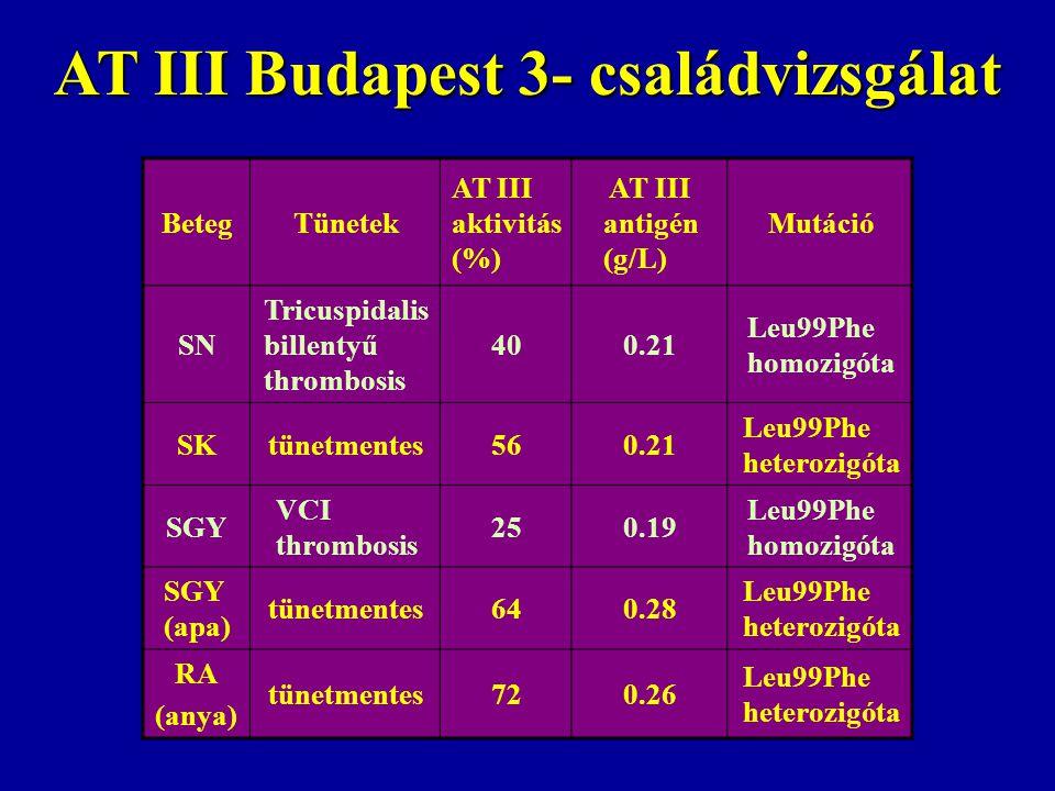 AT III Budapest 3- családvizsgálat