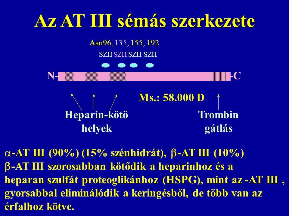 Az AT III sémás szerkezete