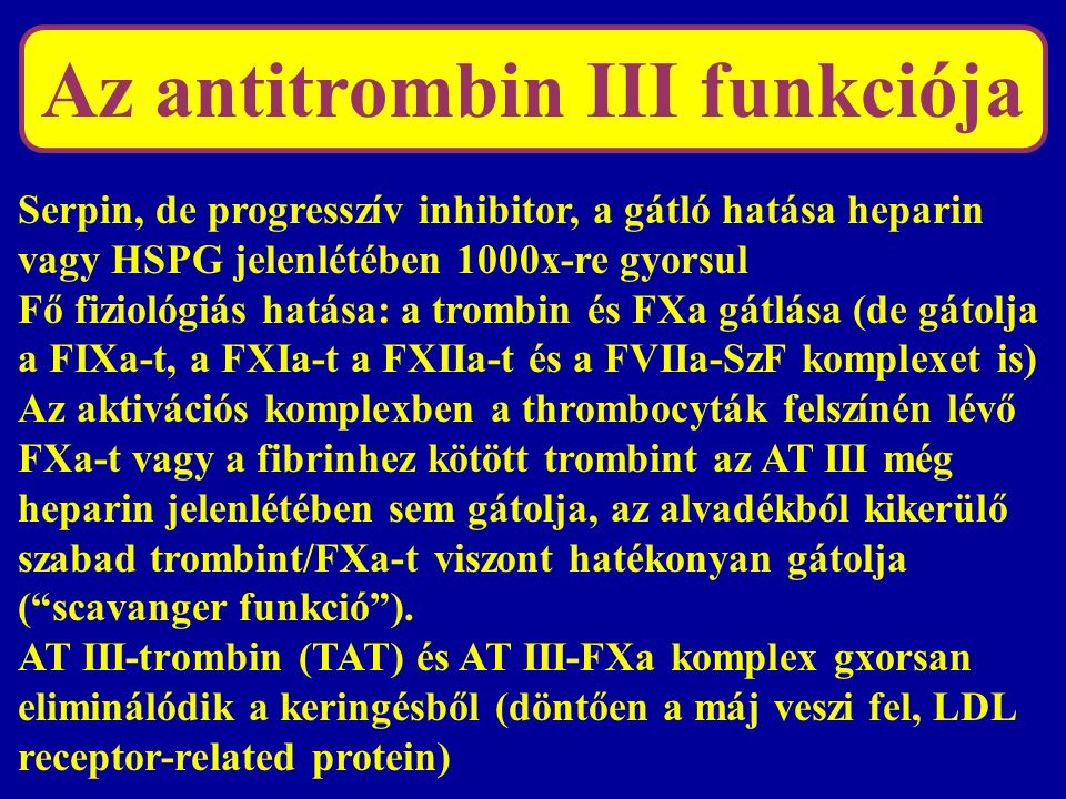 Az antitrombin III funkciója