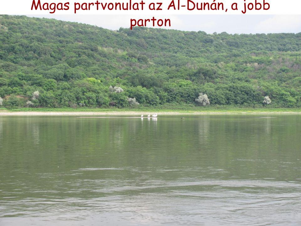 Magas partvonulat az Al-Dunán, a jobb parton