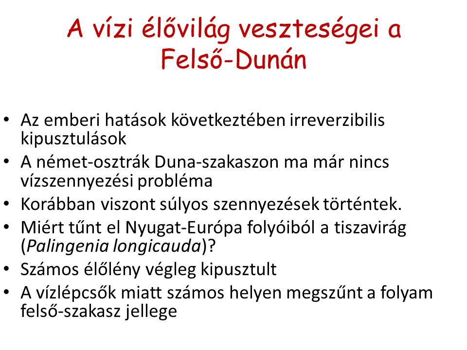 A vízi élővilág veszteségei a Felső-Dunán